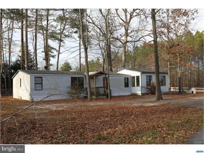 27050 Barkantine Drive, Millsboro, DE 19966 - MLS#: 1004262705