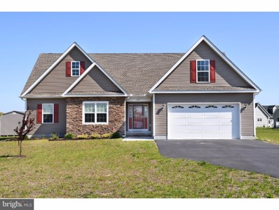 689 Abagail Circle, Harrington, DE 19952 - MLS#: 1004392871
