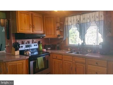 171 Sunny Drive, Mary D, PA 17952 - MLS#: 1004436887
