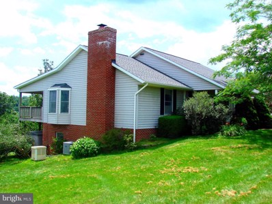 432 Airstrip Road, Luray, VA 22835 - #: 1004449497