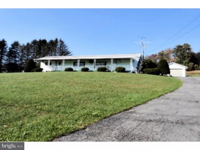 261 Pleasant Valley Road, Pine Grove, PA 17963 - MLS#: 1004552875