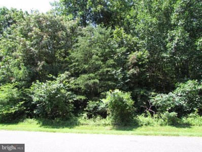 13 Wallace Farms Lane, Fredericksburg, VA 22406 - MLS#: 1004654625
