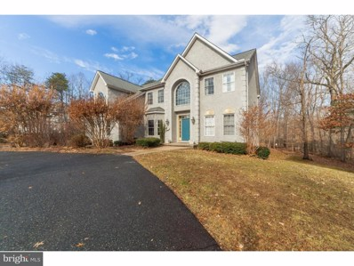 11 Wood Chip Road, Elkton, MD 21921 - MLS#: 1005041113