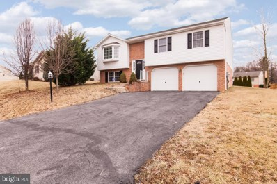 234 Stanford Road, Hagerstown, MD 21742 - MLS#: 1005199889