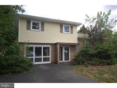 1401 Yoder Avenue, Gilbertsville, PA 19525 - #: 1005281100