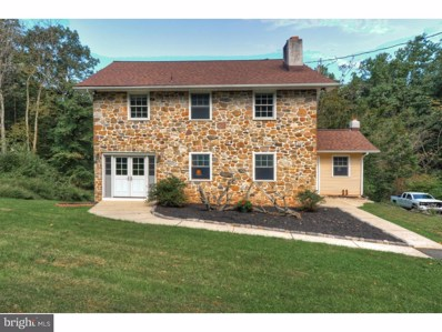 121 Mountain Mary Road, Oley, PA 19512 - #: 1006043288