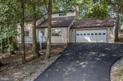 211 Overlook Drive, Cross Junction, VA 22625 - #: 1007293928