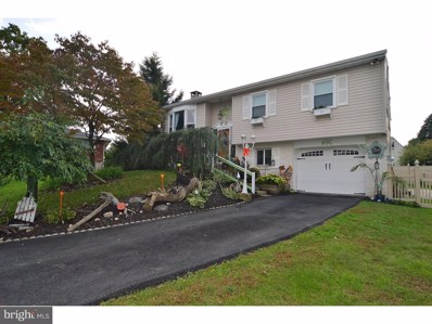 717 Loblolly Lane, Reading, PA 19607 - #: 1007381130