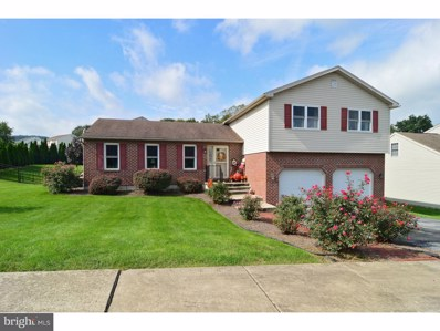 398 Sioux Court, Sinking Spring, PA 19608 - #: 1007535778