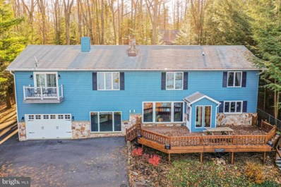 294 State Park Road, Swanton, MD 21561 - #: 1007545224