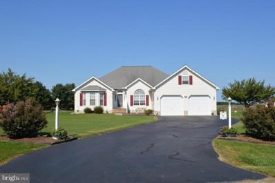 307 Flyway Lane, Chestertown, MD 21620 - #: 1007547006
