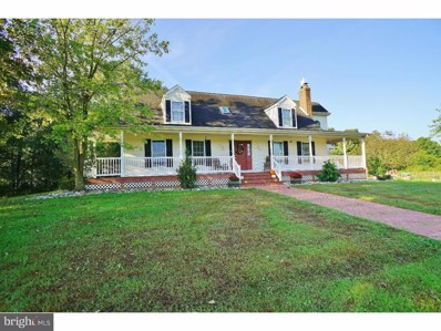 255 Welchville Road, Woodstown, NJ 08098 - MLS#: 1008343188