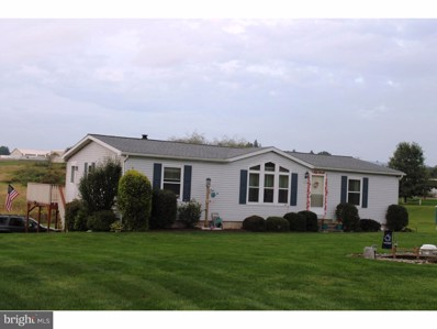 523 Lutz Valley Road, Schuylkill Haven, PA 17972 - MLS#: 1008346984