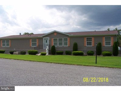 305 Angel Drive, New Ringgold, PA 17960 - #: 1008656716