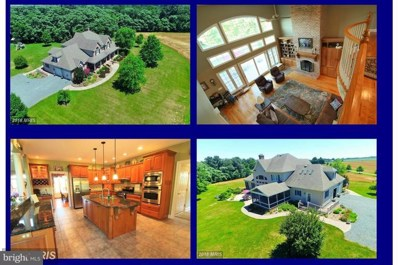 8601 Pippin Hill Lane, Chestertown, MD 21620 - #: 1009688038