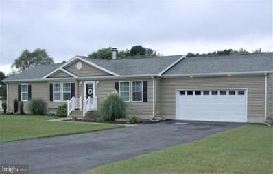 209 Joanne Drive, Millsboro, DE 19966 - MLS#: 1009919986
