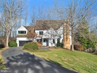 9102 White Chimney Lane, Great Falls, VA 22066 - #: 1009927538