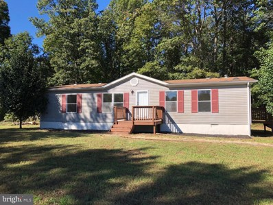 21455 Constitution Highway, Rapidan, VA 22733 - #: 1009928962