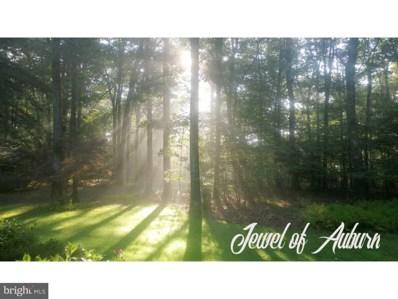 11 Coal Mountain Road, Auburn, PA 17922 - MLS#: 1009934374