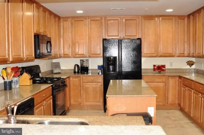 502 Broad Street W UNIT 218, Falls Church, VA 22046 - #: 1009934686