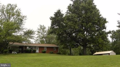 415 Richmond Road, Castleton, VA 22716 - #: 1009938992