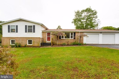 5207 Courtneys Corner Road, Sumerduck, VA 22742 - #: 1009947150