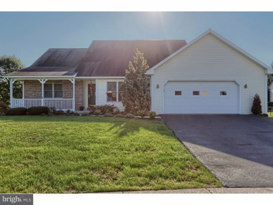 301 Kappa Court, Wernersville, PA 19565 - MLS#: 1009954636
