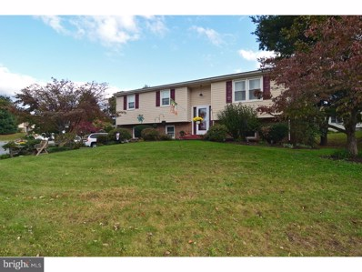 716 Loblolly Lane, Reading, PA 19607 - #: 1009956230
