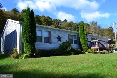 2497 Howards\'s Lick Road, Mathias, WV 26812 - #: 1009965156