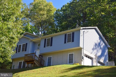 250 Spring Hollow Road, Front Royal, VA 22630 - #: 1009965288