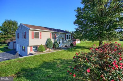 11 Franklin Hills Road, Dillsburg, PA 17019 - MLS#: 1009976082