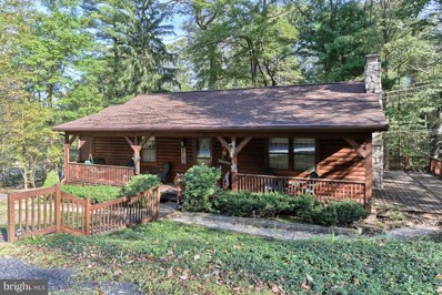 308 Old Mountain Road, Mt Gretna, PA 17064 - #: 1009976280