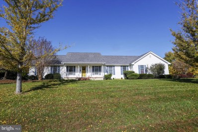 816 S Meadowview Drive, Chestertown, MD 21620 - #: 1009979876