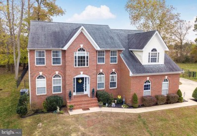 44907 Golden Eye Court, Callaway, MD 20620 - #: 1009985318