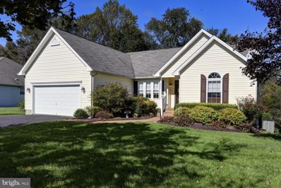 257 Devon Drive, Chestertown, MD 21620 - #: 1010004222