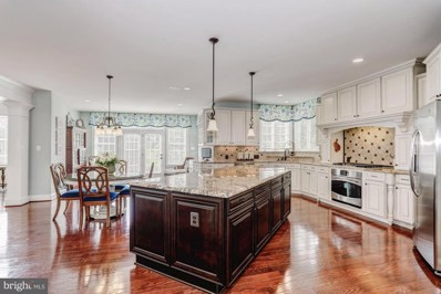 42491 Fawn Meadow Place, Chantilly, VA 20152 - MLS#: 1010004762