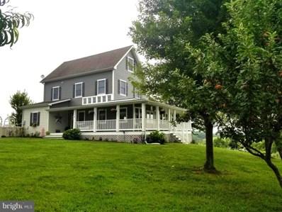 4256 Apple Pie Ridge Road, Winchester, VA 22603 - #: 1010004868