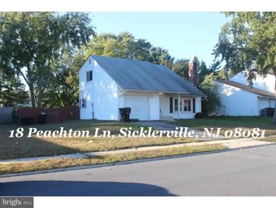 18 Peachton Lane, Winslow, NJ 08081 - #: 1010011444