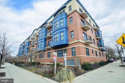 401 13TH Street NE UNIT 204, Washington, DC 20002 - #: DCDC399100