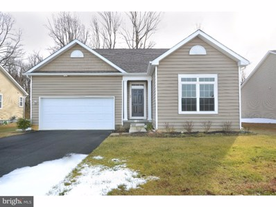 98 S High Meadow Drive, Felton, DE 19934 - #: DEKT180342