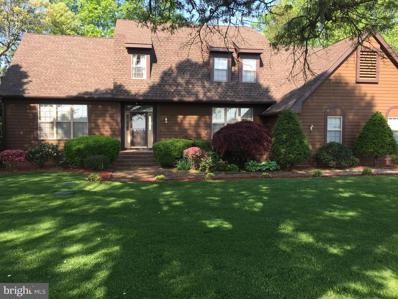 57 Blairs Pond Road, Houston, DE 19954 - #: DEKT2000118