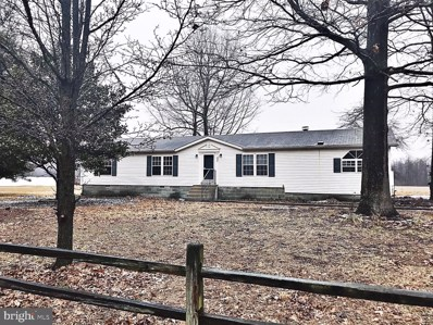 392 Rachel Drive, Harrington, DE 19952 - #: DEKT219686