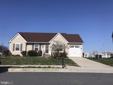 388 Northdown Drive, Dover, DE 19901 - #: DEKT247568