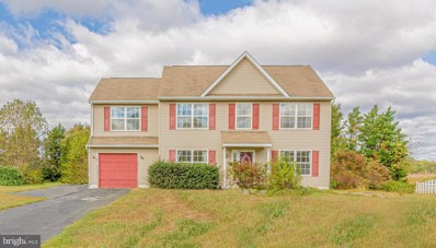 4 Merganser Court, Middletown, DE 19709 - #: DENC489974