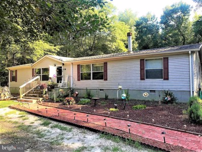 28511 Britts Lane, Dagsboro, DE 19939 - #: DESU100061