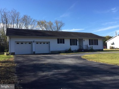 11064 Trussum Pond Road, Laurel, DE 19956 - #: DESU102082