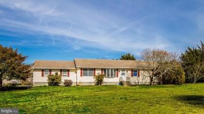 38210 Roy Creek Lane, Selbyville, DE 19975 - #: DESU138260