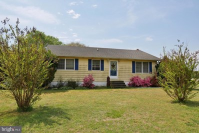 33057 Brown Drive, Frankford, DE 19945 - #: DESU139176