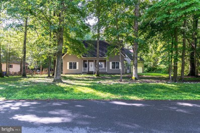 23076 Lakeview Drive, Millsboro, DE 19966 - #: DESU144668