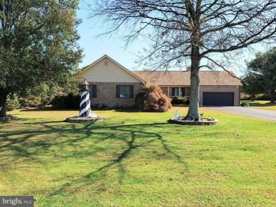 320 Pond Road, Millsboro, DE 19966 - #: DESU151606
